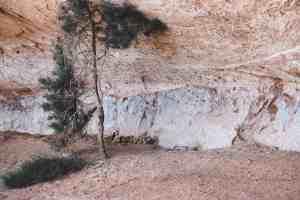 Bartlett pictographs Moab Utah