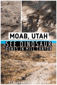 The Mill Canyon Dinosaur Trail in Moab is a great place to see dinosaur bones that is easy to get to. The Mill Canyon Dinosaur Trail is near the track site. Utah national parks | Utah road trip | hiking in Utah | best things to do in Utah | Utah hikes | Utah road trip itinerary | national parks in Utah | Utah hiking | hiking in utah | moab utah | moab hikes | hiking in moab | dinosaur tracks in Utah | dinosaur bones in Utah | fossils in utah | utah things to do | utah vacation | utah travel