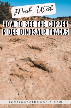 The Copper Ridge dinosaur tracks in Moab are a great roadside stop for families or anyone interested in dinosaurs. They are very easy to get to. Utah road trip | hiking in Utah | best things to do in Utah | Utah hikes | Utah road trip itinerary | dinosaur tracks in utah | Moab utah | Moab things to do | Moab travel | Moab hikes | Hikes in moab utah | moab utah hiking #utah #usa #roadtrip