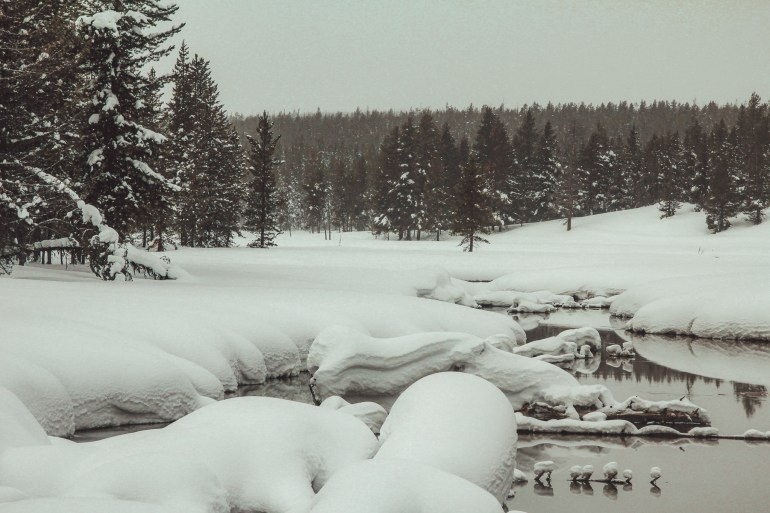 snowshoeing at flagg ranch yellowstone