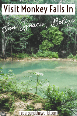 Hike to Monkey Falls outside of San Ignacio, Belize and have a relaxing afternoon swimming and exploring the jungle. Belize travel | belize vacation | belize things to do | belize photography | san ignacio belize | san ignacio belize things to do | belize hiking | san ignacio things to do