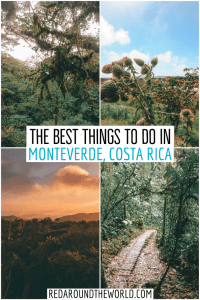 Experience the Costa Rican jungle and hike in the Monteverde Cloud Forest. Go Zip lining and fly among the treetops where it all began. costa rica | backpacking costa rica | costa rica travel | costa rica vacation | costa rica things to do | costa rica hiking | monteverde cloud forest | monteverde ziplining | monteverde costa rica | monteverde costa rica things to do