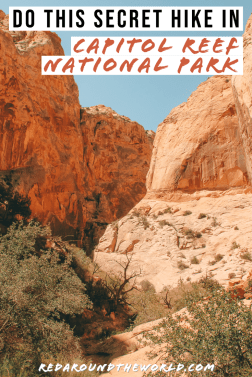 Surprise Canyon in Capitol Reef is a cool slot canyon hike in the Waterpocket Fold. It's a lightly trafficked trail for all skill levels. Utah national parks | Utah road trip | hiking in Utah | best things to do in Utah | Utah hikes | Utah road trip itinerary | national parks in Utah | Capitol Reef National Park | Capitol Reef hikes | Capitol Reef Utah | Things to do in Capitol Reef | hiking in Capitol Reef | utah slot canyon | surprise canyon capitol reef