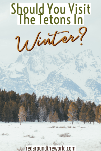 Grand Teton National Park in the winter is a totally different experience. It is worth visiting the Grand Teton in the winter to look for wildlife. Tetons in winter | wildlife in the tetons | Grand teton national park winter | Winter tetons | Snowshoeing in the tetons | Jackson hole winter | Jackson Wyoming winter