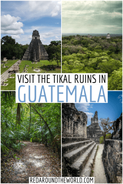 The Tikal Ruins in Guatemala are the best to see at sunrise. Tikal is a must-see on any trip to Guatemala and Belize. Backpacking Guatemala | flores Guatemala | tikal ruins from flores | Tikal ruins sunrise | mayan ruins central america | Guatemala backpacking things to do | Guatemala vacation | ruins in central America | ruin hike in guatemala | ruins in guatemala | Flores guatemala things to do | tikal ruins guatemala
