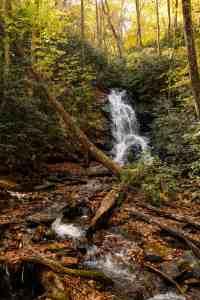 log hollow falls north carolina