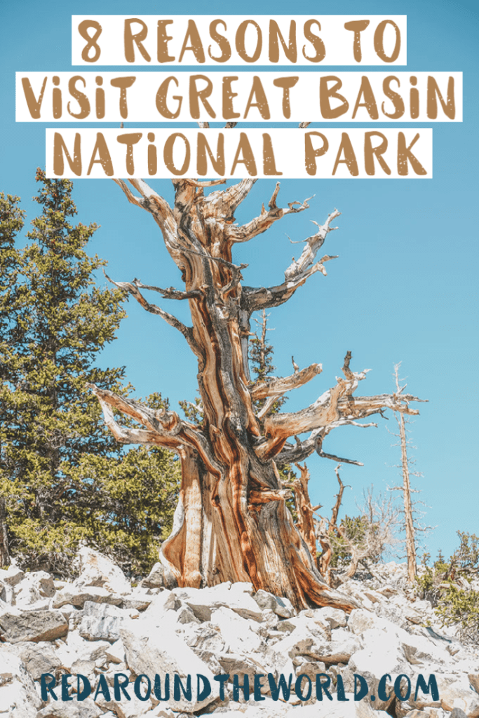 Great Basin National Park is a Nevada hidden-gem. It's an alpine paradise in the middle of the lonely desert with tons of amazing things to do. Great basin national park | great basin national park nevada | great basin things to do | hiking great basin national park | nevada road trip | nevada things to do | nevada vacation | underrated national parks | overlooked national parks