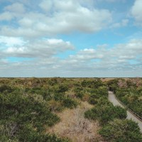 Biking Shark Valley: One Of The Best Things To Do In Everglades National Park