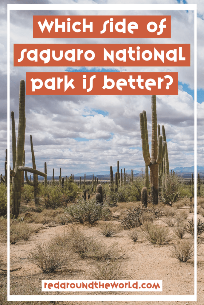 Which side of Saguaro National Park is better? That's what we all want to know before visiting and you can find out in this east vs west Saguaro showdown. saguaro national park | saguaro arizona | Arizona road trip | Arizona national park | saguaro national park arizona | saguaro cactus arizona | which side of saguaro is better | Arizona vacation | Arizona things to do