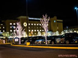 red-bank-holiday-lights-10