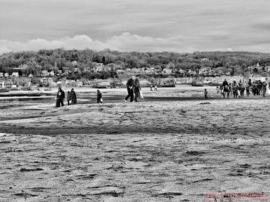 Clean Ocean Action Beach Sweeps 2 19 of 20