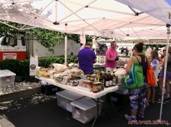 Red Bank Farmer's Market 48 of 48