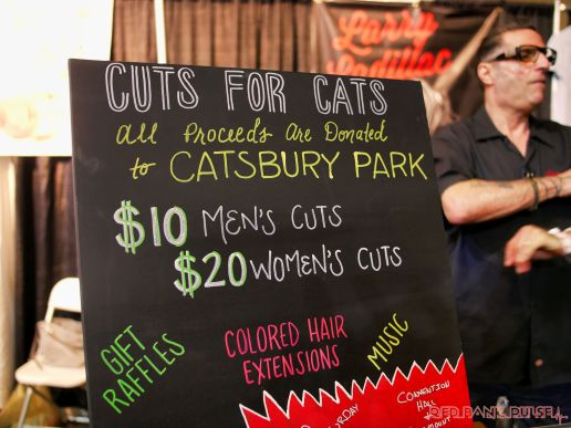Catsbury Park Cat Convention 26 of 65