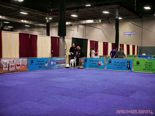 Super Pet Expo April 2018 19 of 117