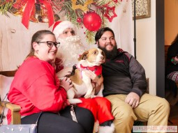 Home Free Animal Rescue with Santa Paws at Bradley Brew Project 29 of 53