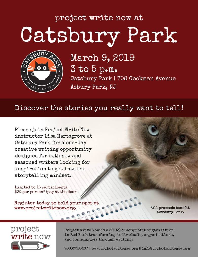 Project Write Now at Catsbury Park