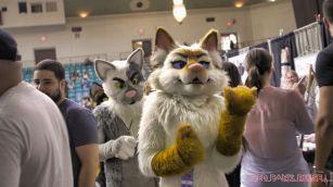 Catsbury Park Cat Convention 2019 124 of 183