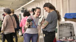 Catsbury Park Cat Convention 2019 162 of 183