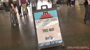 Catsbury Park Cat Convention 2019 180 of 183