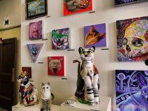 Catsbury Park Cat Convention 2019 23 of 183