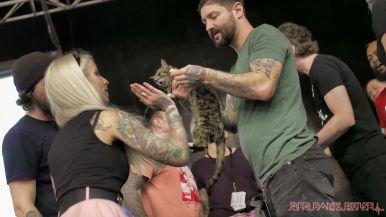 Catsbury Park Cat Convention 2019 70 of 183