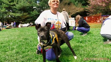 Monmouth County SPCA dog walk & pet fair 2019 94 of 95