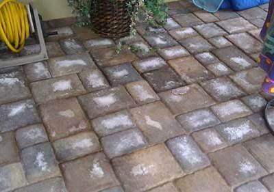 GROUT OR MORTAR?
