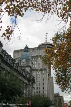 Vancouver landmarks framed by Fall tree