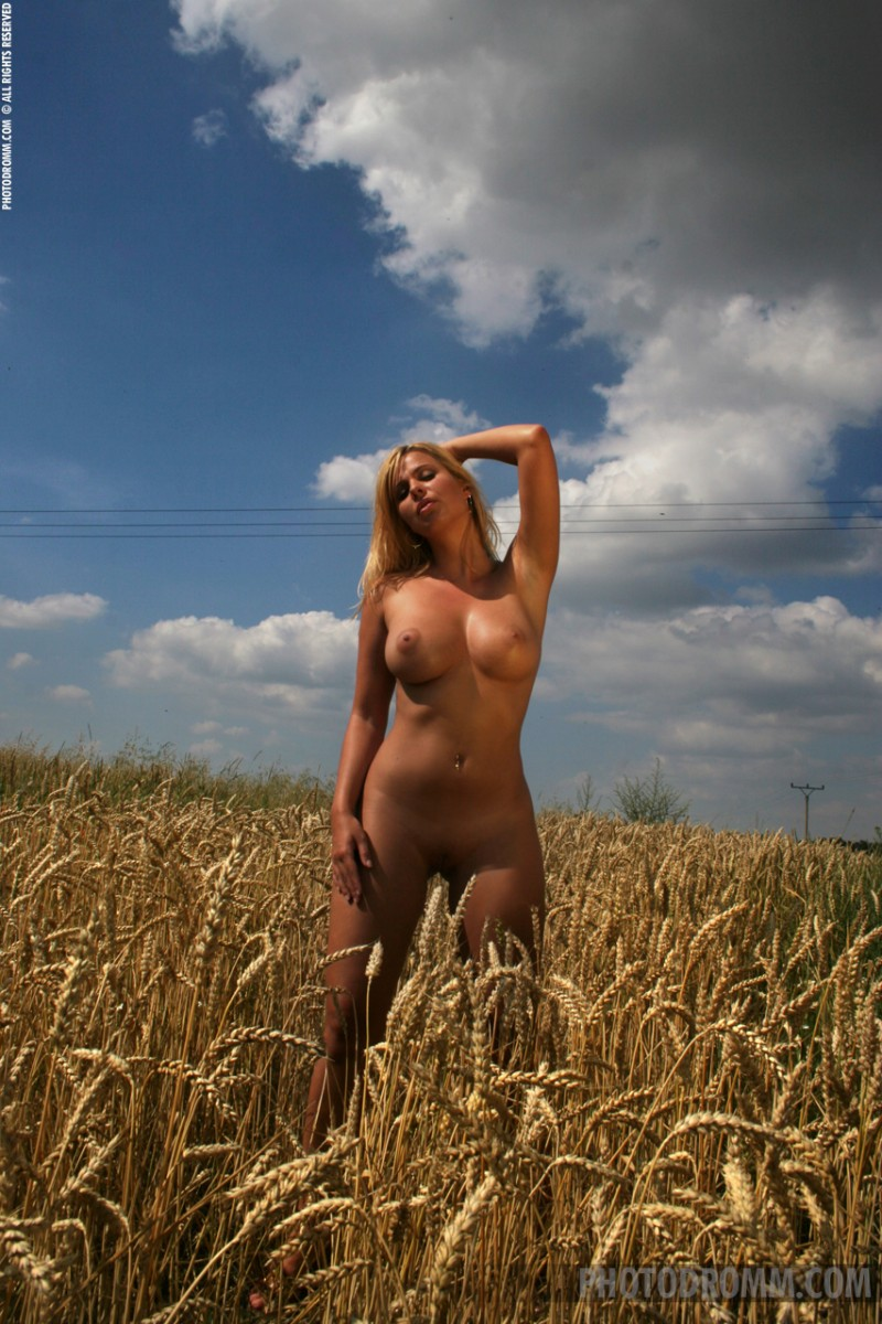 Katerina Hovorkova  Grain field  RedBust