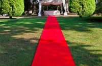 Red carpets sale at cheaper prices in South Africa - Red ...