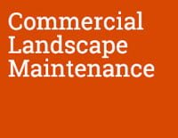 Commercial Landscape Maintenance Hudson Valley NY