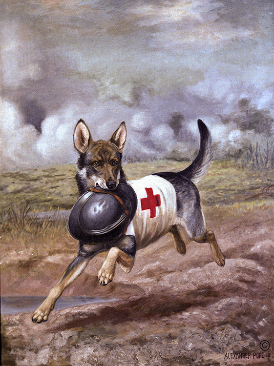 Image result for red cross dog