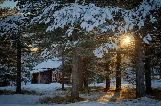 cabin_in_the_woods_by_scwl-d5q9263