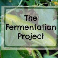 The Fermentation Project