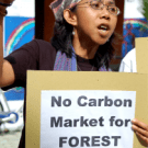 REDD: CO2lonialism of Forests