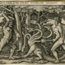 The emergence of the REDD Hydra