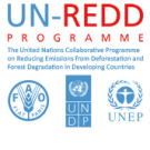 UN-REDD invites comments on draft social and environmental principles and criteria