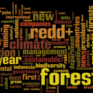 REDD in the news: 26 December 2011 - 1 January 2012