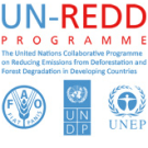 Interview with Budhi Sayoko, Laksmi Banowati and Rogier Klaver, UN-REDD Indonesia