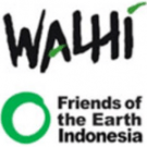 Interview with Teguh Surya, WALHI: We are against REDD. We are against carbon trading.
