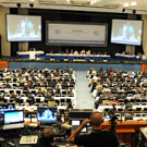 FERN's report from the Bonn climate meeting