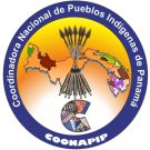 COONAPIP, Panama's Indigenous Peoples Coordinating Body, denounces UN-REDD