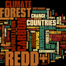 REDD in the news: 1-7 October 2012