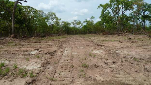 Clearing of Community Forest in Beng Commune, Oddar Meanchey.