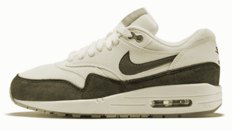 sustain green s biodegradable credit card nike s air shoes and