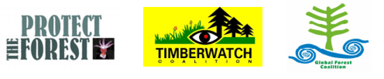 Protect the Forest, Timberwatch, GFC