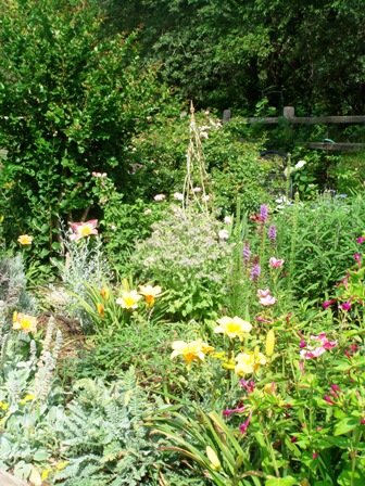 blog-garden2.JPG