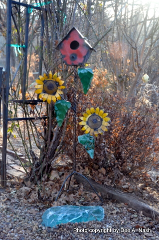 Why So Little Garden At The Okc Home And Garden Show Red Dirt Ramblings