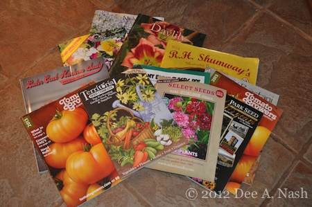 A forest of catalogs