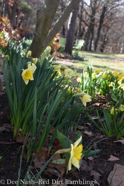 Spring plans